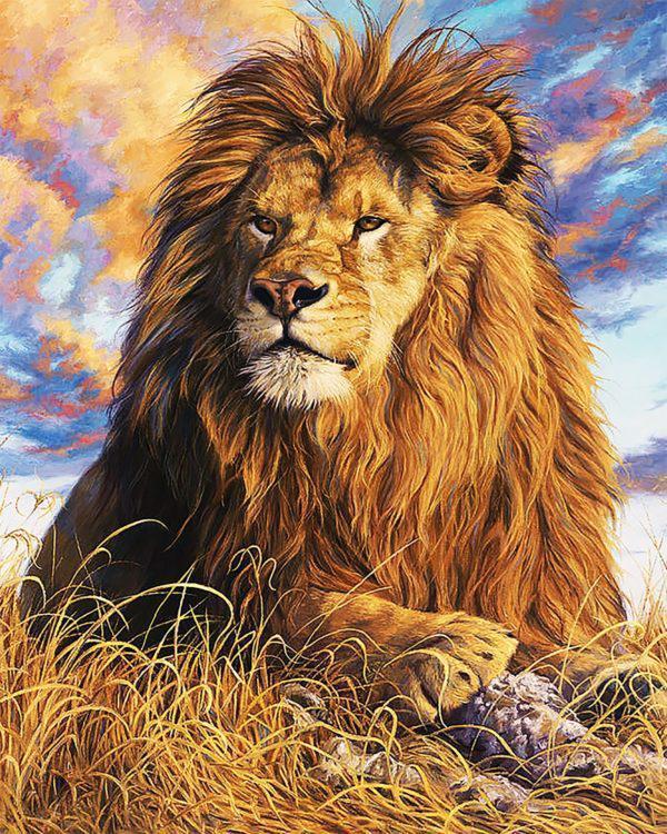Картина рисование по номерам Чарівний діамант Царь зверей РКДИ-0004 40х50см набор для росписи, краски, кисти,