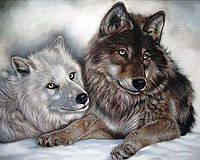 Картина рисование по номерам Чарівний діамант Волки – Инь и Янь РКДИ-0045 40х50см набор для росписи, краски,, фото 1