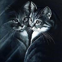 Картина рисование по номерам Чарівний діамант Отражение РКДИ-0239 40х40см набор для росписи, краски, кисти,, фото 1