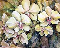 Картина рисование по номерам Чарівний діамант Орхидея – Батик РКДИ-0273 40х50см набор для росписи, краски,, фото 1