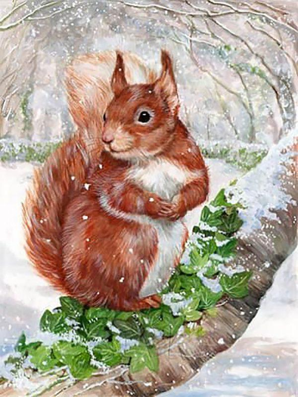Картина рисование по номерам Чарівний діамант Белочка зимой РКДИ-0096 30х40см набор для росписи, краски,