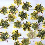 Искусственные листья клена желто- зеленные c хвостиком  50 шт в уп, фото 2