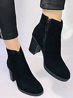 Жіночі черевики. На середньому каблуці. Натуральний замш. Люкс якість. Blue Tempt. Р. 37, 38 .Vellena, фото 6