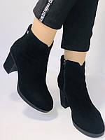 Жіночі черевики. На середньому каблуці. Натуральний замш. Люкс якість. Blue Tempt. Р. 37, 38 .Vellena, фото 5