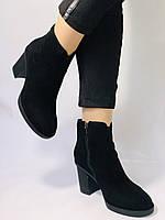 Женские ботинки. На среднем каблуке. Натуральный замш. Люкс качество. Blue Tempt. Р. 37, 38 .Vellena, фото 3