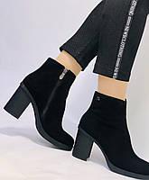 Жіночі черевики. На середньому каблуці. Натуральний замш. Люкс якість. Blue Tempt. Р. 37, 38 .Vellena, фото 7