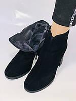 Жіночі черевики. На середньому каблуці. Натуральний замш. Люкс якість. Blue Tempt. Р. 37, 38 .Vellena, фото 9