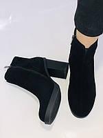 Жіночі черевики. На середньому каблуці. Натуральний замш. Люкс якість. Blue Tempt. Р. 37, 38 .Vellena, фото 10