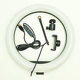 Кольцевая LED лампа 16W с держателем для телефона S31 EL-1142 + штатив трипод (EL 2223371351), фото 4