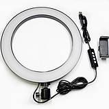 Набор блогера кольцевая LED лампа 26 см с держателем телефона и штативом 2.1 м hm, фото 4