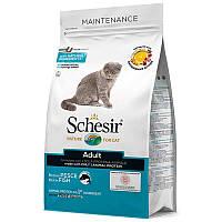 Schesir (Шезир) Cat Adult Fish - Сухой монопротеиновый корм с рыбой для взрослых котов, фото 1