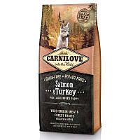 Carnilove (Карнилав) Salmon & Turkey for Large Breed Puppy - Сухой корм с лососем и индейкой для щенков и юниоров крупных пород, фото 1