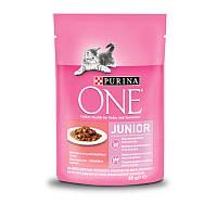Purina ONE (Пурина Ван) JUNIOR Cat - Пауч для котят и лактирующих кошек с лососем и морковью, фото 1