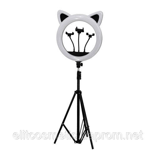 Лампа RK-45 кольцевая Панда 3D три подставки