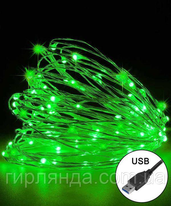 РОСА 100 LED, 220В +USB,  10м, зелений +FLASH