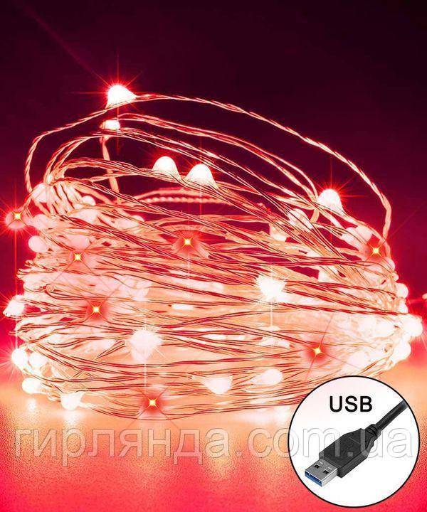 РОСА 100 LED, 220В +USB, 10м, червоний +FLASH