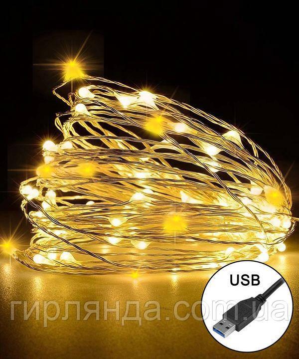 РОСА 100 LED  220В +USB, 10м, теплий білий +FLASH
