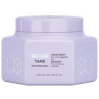 Розгладжуюча маска для волосся Fibre Clinix Tame Treatment Masque Schwarzkopf Professional, 200 мл