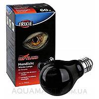 Лампа ночная Trixie, 50 Вт