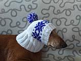 Шапка для собаки в'язана універсальна, фото 2
