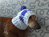 Шапка для собаки в'язана універсальна, фото 3