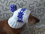 Шапка для собаки в'язана універсальна, фото 6