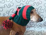 Шапка Санты для маленькой собаки универсальная, фото 7