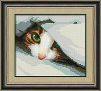 Алмазная мозаика Спрятался (котенок) Dream Art 30021 22x25см 22 цветов, квадр.стразы, полная зашивка. Набор, фото 1