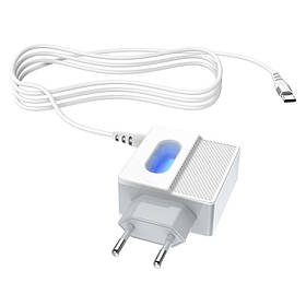 Зарядное устройство к телефону Hoco C75 (2USB/2.4A) +Type-C