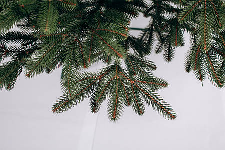 Ялинка штучна літа Преміум зелена 2,1 м, фото 2