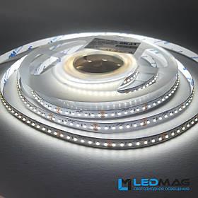 Светодиодная лента ESTAR 2216/182 12Вт 24В 6000-6500К Белый IP20
