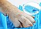 Лапомойка - Стакан для митья лап DOG FOOT WASH (L), фото 4