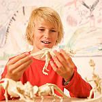 Набір для розкопок 4M Скелет трицератопса (00-03228), фото 9