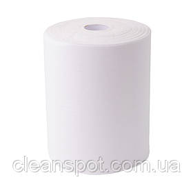 Полотенца бумажные рулонные автоматы 120 м. целлюлоза 2-х слойные Eco Point Standart