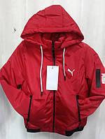 Куртка детская красного цвета подростковая ветровка с логотипом Puma