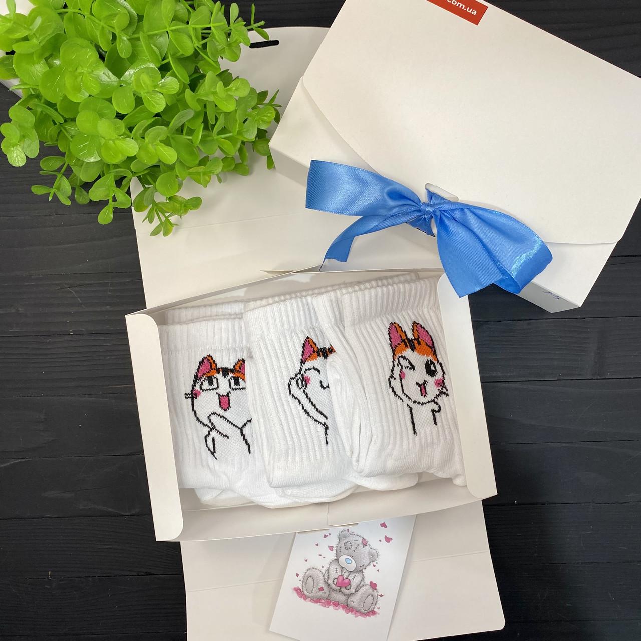 """Подарочный набор женский носки 3 шт """"Коты лапки"""" Rock'n'socks"""