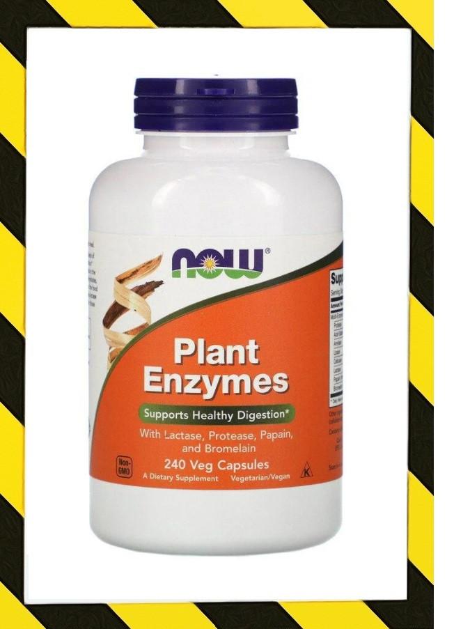 Now Foods, Пищеварительные Ферменты растительного происхождения, Амилаза Липаза и др. 240 капсул