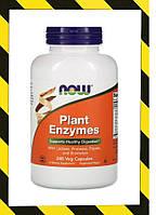 Now Foods, Пищеварительные Ферменты растительного происхождения, Амилаза Липаза и др. 240 капсул, фото 1