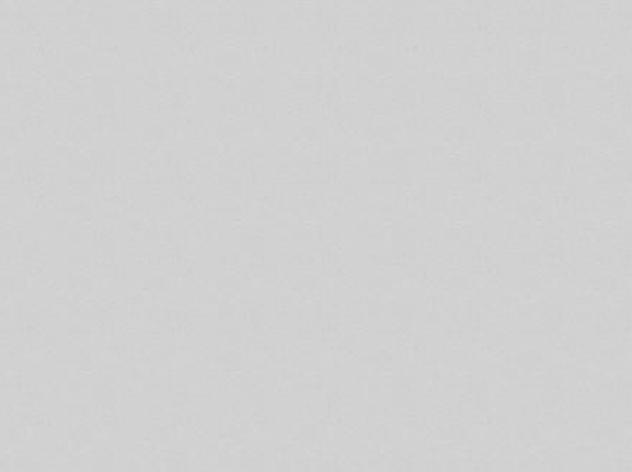 ЛДСП SWISS KRONO U112 PE ПЕПЕЛ 2800X2070X16, фото 2