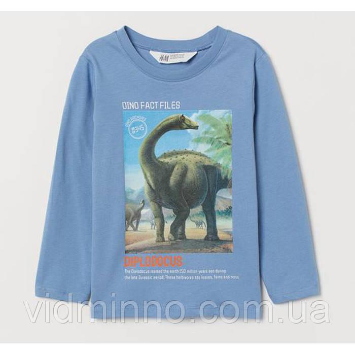 Дитяча кофта Дінозавр для хлопчика H&M на зріст 110-116 см (4-6 років)