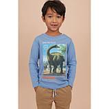 Дитяча кофта Дінозавр для хлопчика H&M на зріст 110-116 см (4-6 років), фото 2