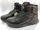 Стильні зимові шкіряні черевики під кросівки на цигейке Bertoni, фото 2