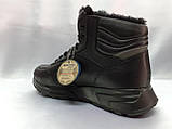 Стильні зимові шкіряні черевики під кросівки на цигейке Bertoni, фото 7