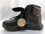 Стильні зимові шкіряні черевики під кросівки на цигейке Bertoni, фото 8