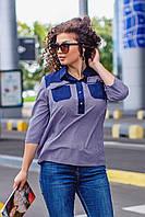 """Блузка женская полубатальная,софт-коттон, размеры 52-56 (3цв)""""ASTRA"""" недорого от прямого поставщика"""