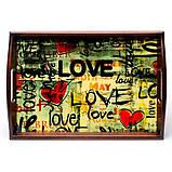 Поднос на подушке с ручками BST 710049 48*33 коричнево-красный Весенняя любовь, фото 2