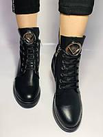 Жіночі осінні черевики на низькому каблуці. Натуральна шкіра.Туреччина. Alvito. р. 36-40. Vellena, фото 5