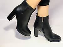 Женские модельные ботинки на каблуке. Натуральная кожа. Люкс качество. Erisses. Р. 35.36.37.38.40.Vellena, фото 9