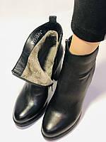 Женские модельные ботинки на каблуке. Натуральная кожа. Люкс качество. Erisses. Р. 35.36.37.38.40.Vellena, фото 10
