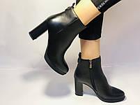 Женские модельные ботинки на каблуке. Натуральная кожа. Люкс качество. Erisses. Р. 35.36.37.38.40.Vellena, фото 2